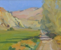 2007 Cynthia Mohseni, Escalante Ranch